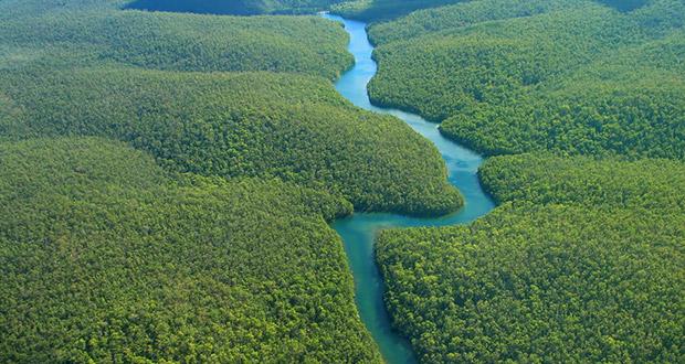 Τα 10 μεγαλύτερα ποτάμια σε μήκος στον κόσμο με φωτογραφίες, ο Αμαζόνιος