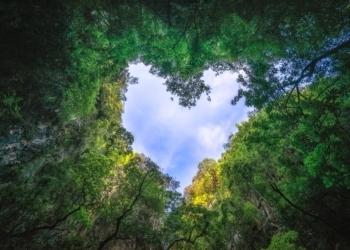 Ένα από τα πιο εντυπωσιακά βίντεο για την ομορφιά του πλανήτη μας.