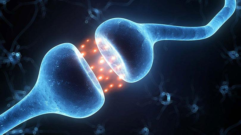 Η κβαντική θεωρία ύπαρξης ψυχής από 2 φυσικούς