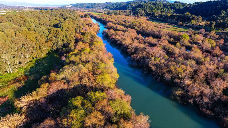 Τα 10 μεγαλύτερα ποτάμια σε μήκος της Ελλάδας με φωτογραφίες, Αλφειός