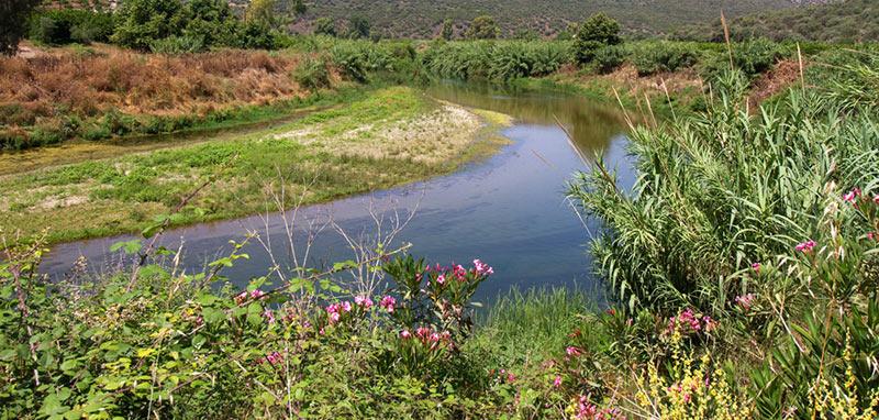 Τα 10 μεγαλύτερα ποτάμια σε μήκος της Ελλάδας με φωτογραφίες, Ευρώτας
